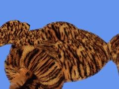 FurRender 2008-07-02 14-30-14-23